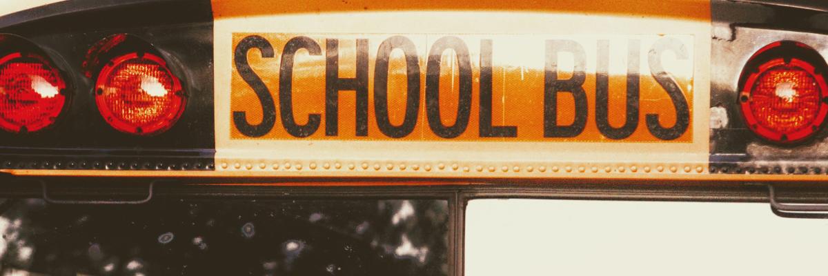 Taking sustainability to schools - Photo by Joshua Hoehne on Unsplash.